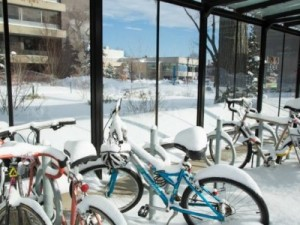Bikes in bike rack covered in snow