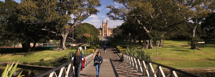 usyd-avenue_banner-image