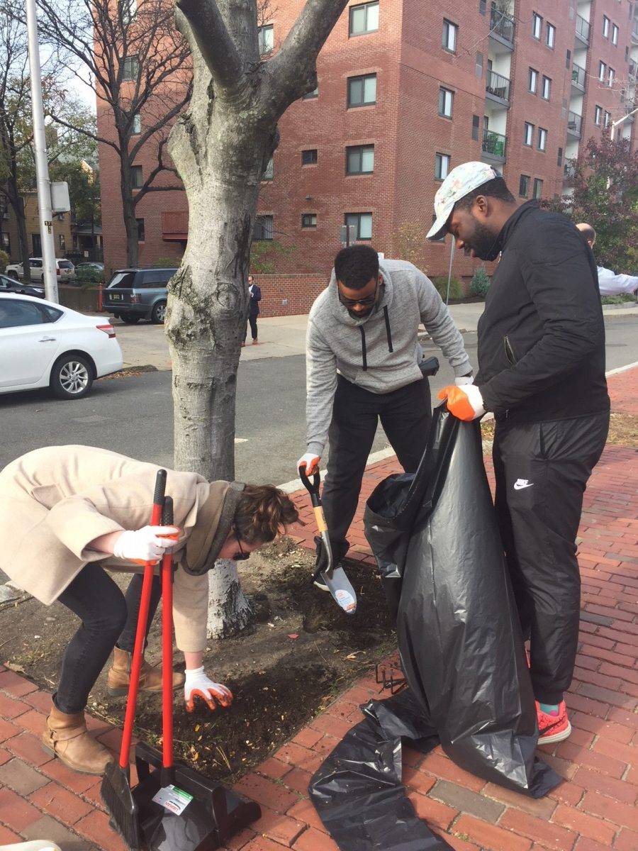 three participants work together to clear out trash and weeds from tree wells