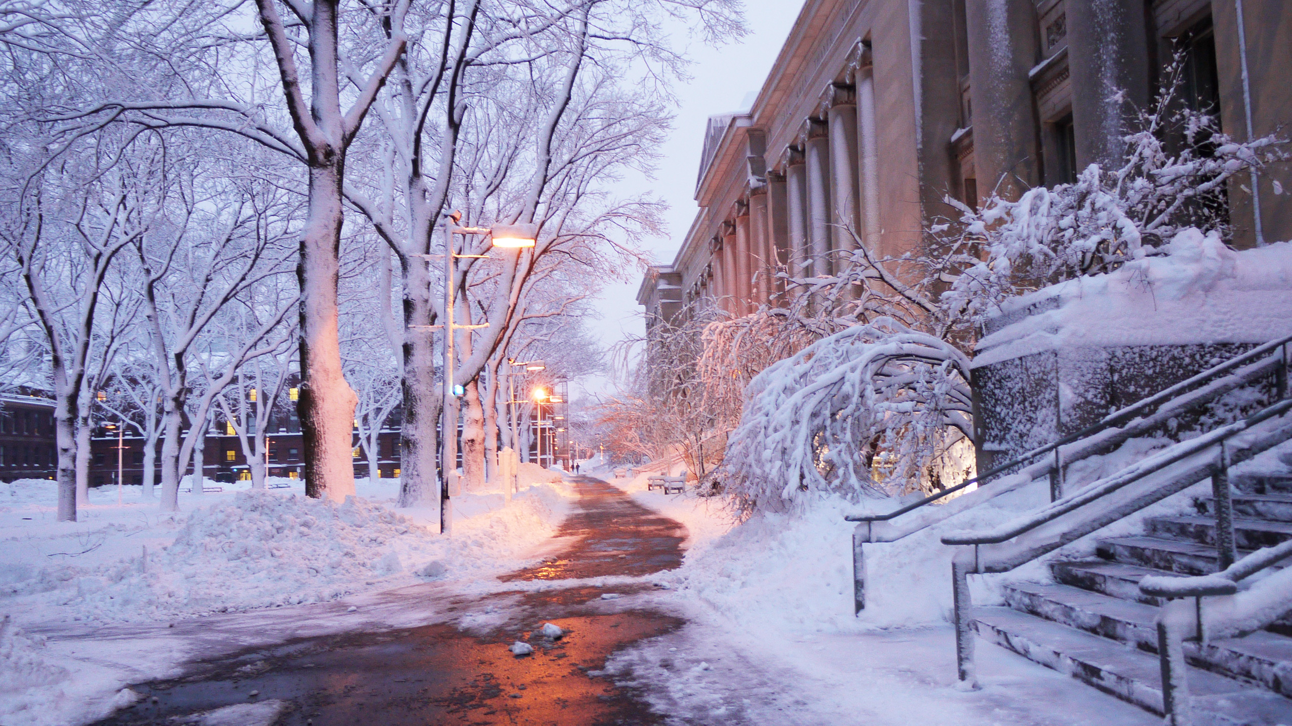 Snow on the HLS campus at twilight