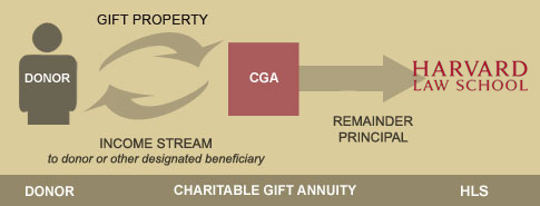 Charitable gift annuity graph