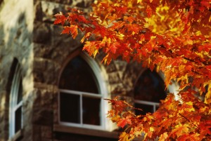 Fall foliage and corner of building