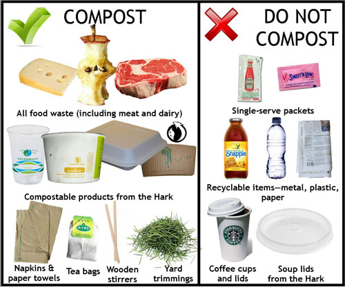 List Of Food That Do Not Have Sustainability