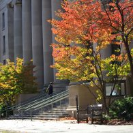 HLS in fall