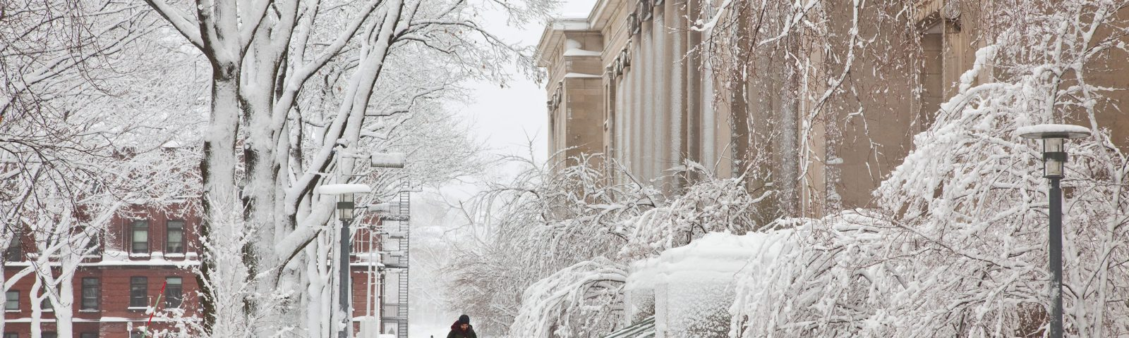 A student walks through snow in front of Langdell Hall